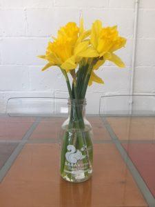 Baba's Brew Daffodil Vase